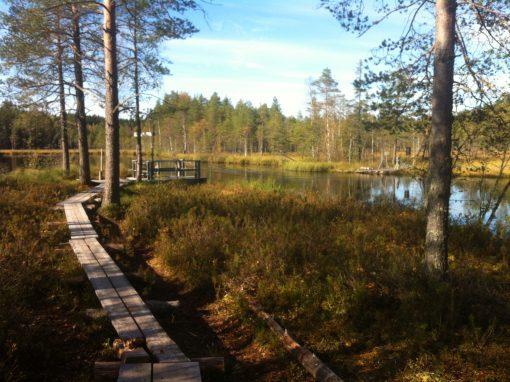 Nyrölä, Jyväskylä