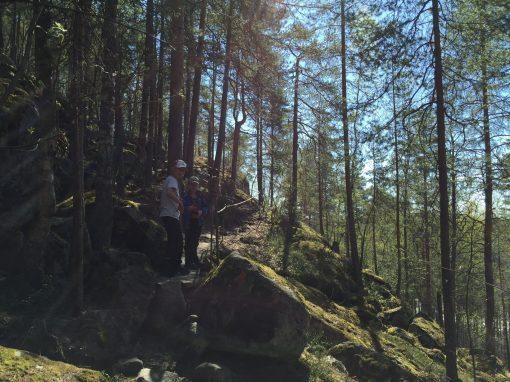 Kanavuori, Jyväskylä