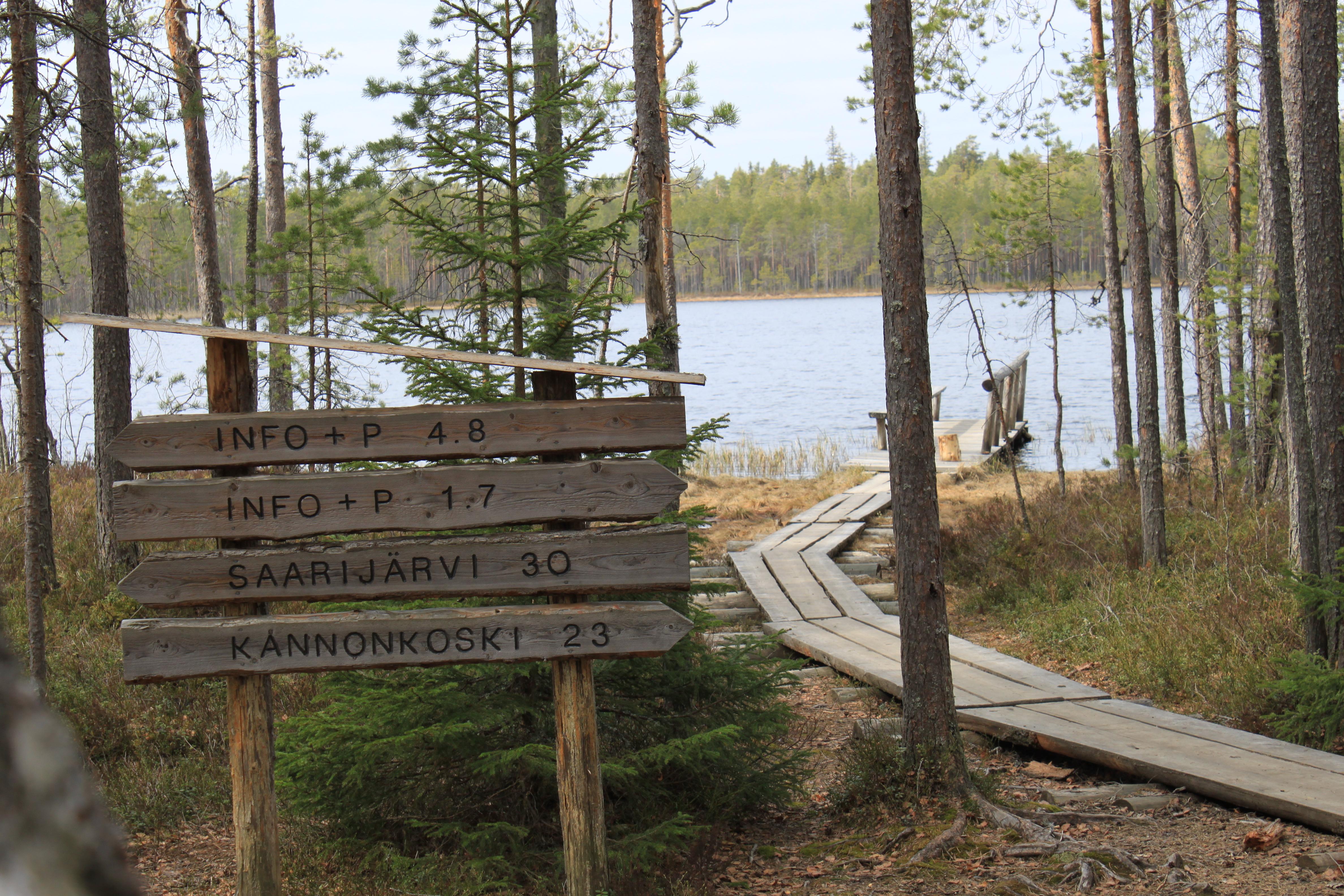 Kotajärvi